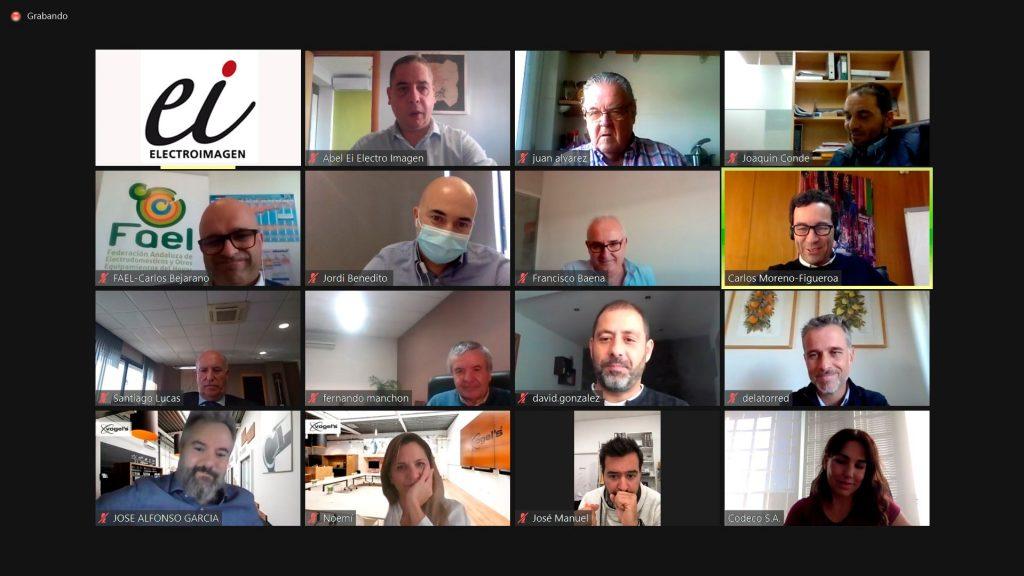 Participantes en la videotertulia de Electroimagen sobre el canal Electro en Andalucía
